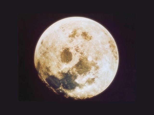 月旅行プラン