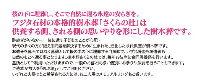 p_kaita201608_04